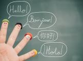 Transfer językowy i jego negatywne aspekty w relacji język ojczysty – język obcy, pierwszy język obcy – drugi język obcy